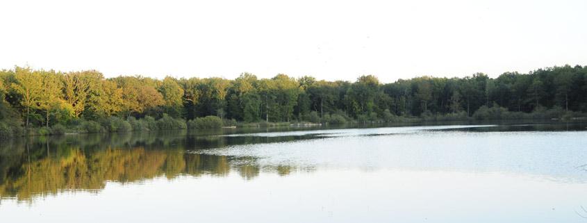 Actions, propriétés, bois, étangs pour la chasse et la pêche