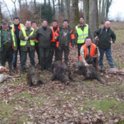Chasse Grand Gibier